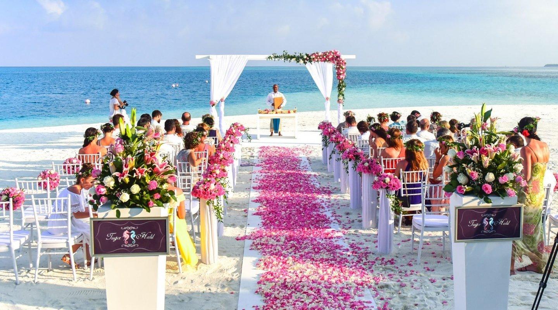 dr.vr  wedding photo